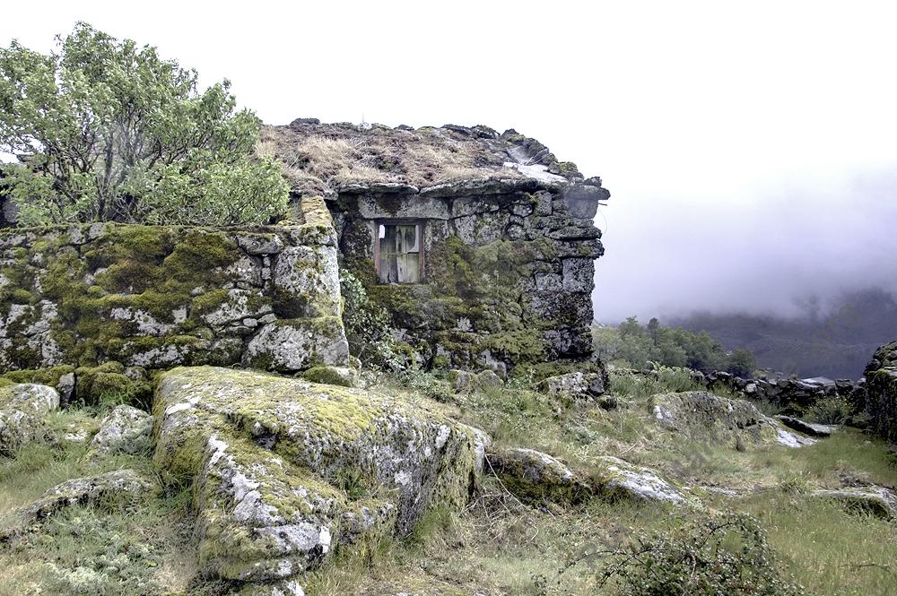 Barreiro (Serra do Alvão)